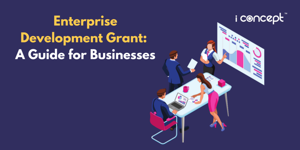 Enterprise Development Grant (EDG): A Guide for Businesses